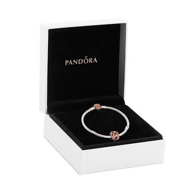 Pandora Rose Star Constellations Bracelet and Charm Gift Set