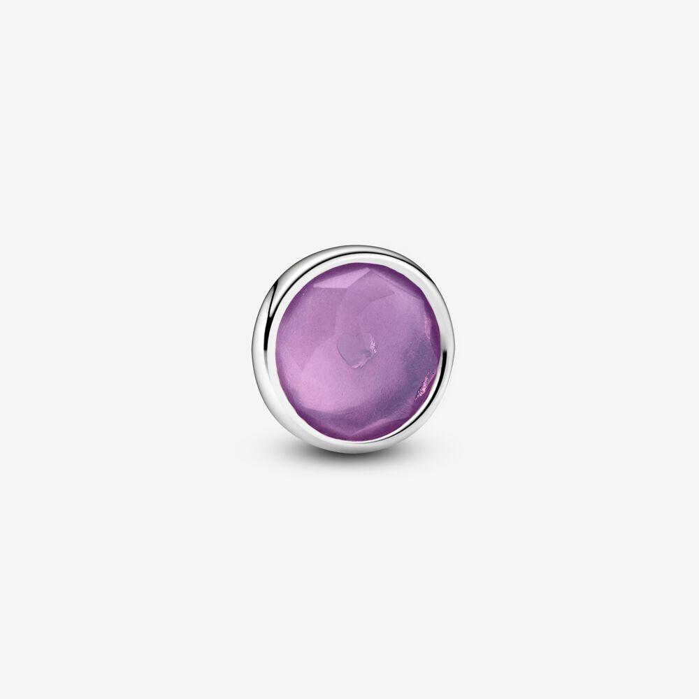 Purple February Birthstone Petite Charm